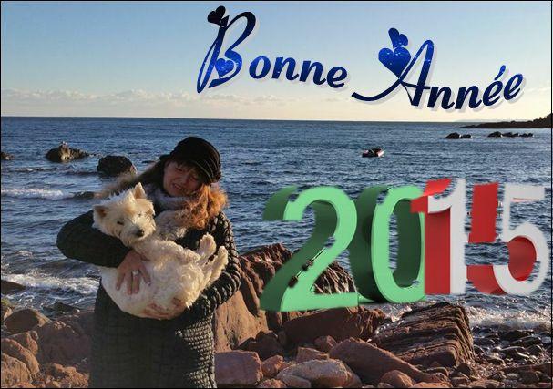 Blog de barzotti83 : Rikounet 83, BONNE ANNEE 2015