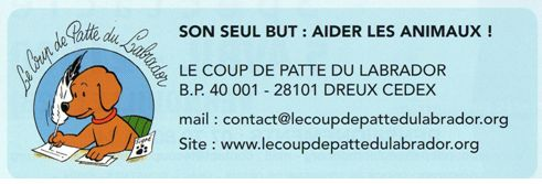 Association LE COUP DE PATTE DU LABRADOR